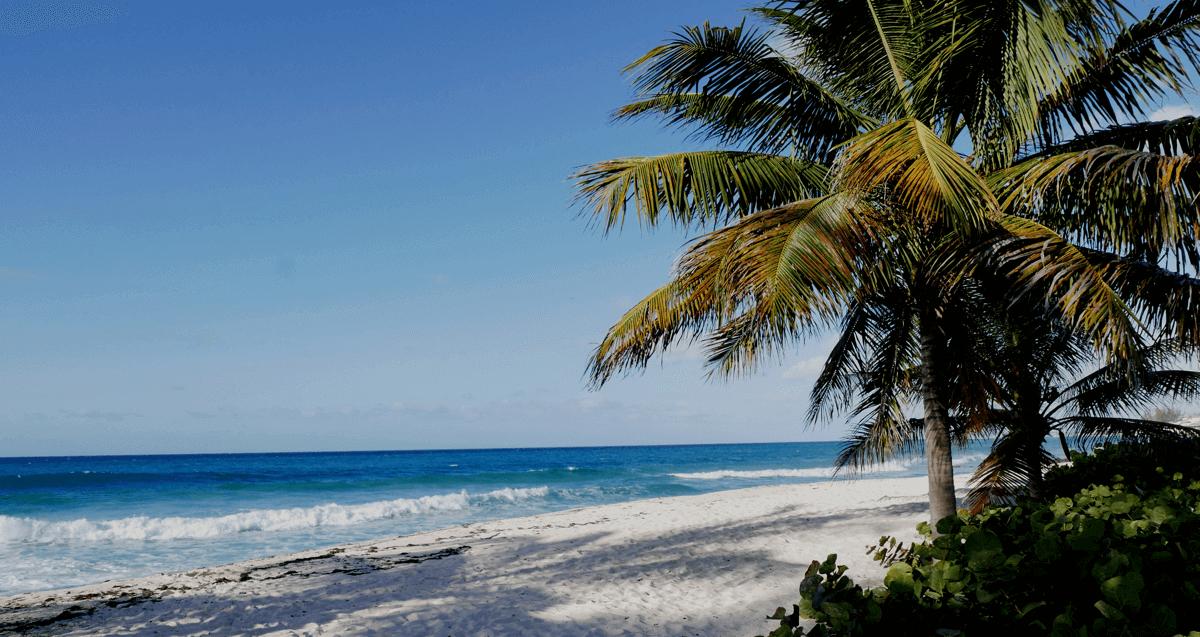 Top 5 Barbados Beaches